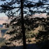 Yosemite Valley Panoramas Part 2: Glacier Point, Yosemite Falls, and Giant Sequoias
