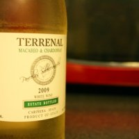 Terrenal Macabeo and Chardonnay 2009