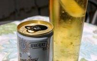 Sunshine Energy Drink - Ginger Berry