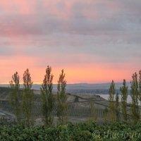 Prosser Wine Part 1: The Allure of Alexandria Nicole Cellars