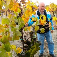 Tasting along Northern Sonoma County's Wine Road