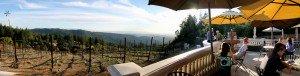 Wine Tasting in the Santa Cruz Mountains