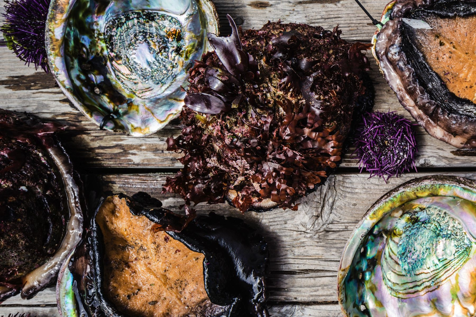 Food Lover Travel: Abalone Getaway and Half Moon Bay's Chef Series