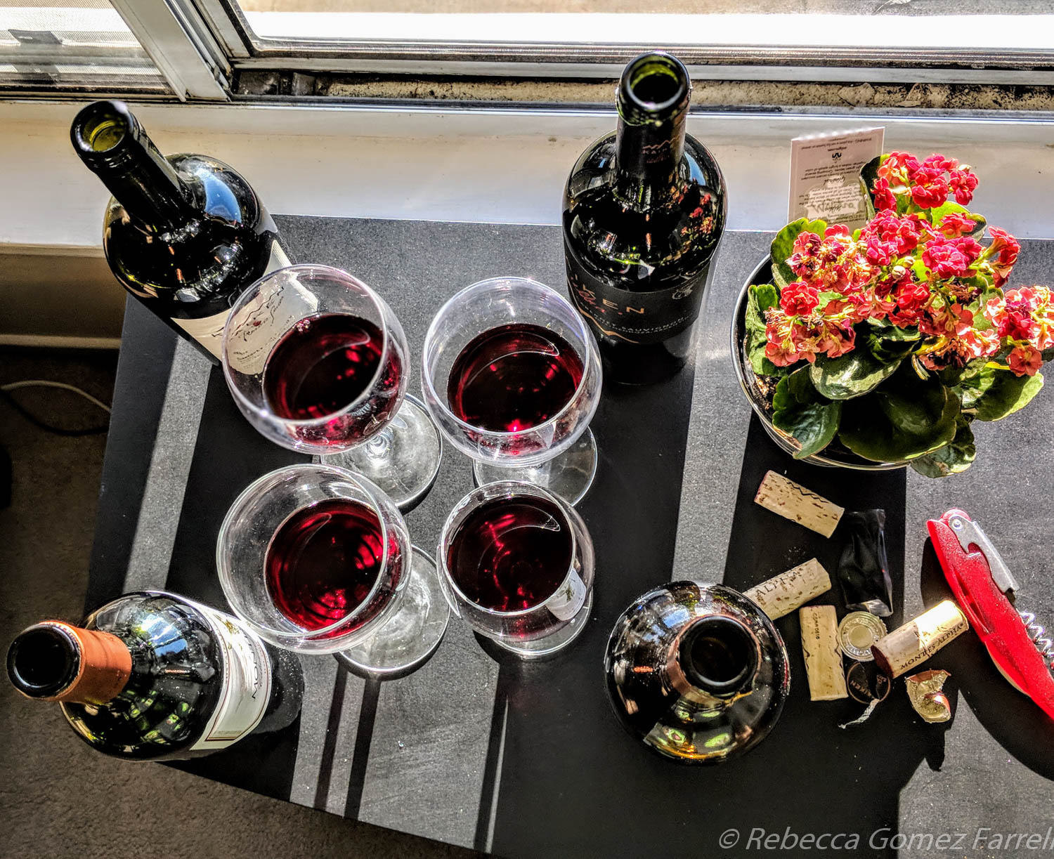 Cabernet Sauvignons from the Andes: Montes and Kaiken