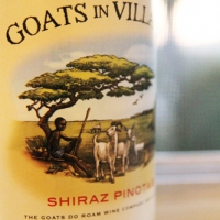 Goats in Villages Shiraz Pinotage