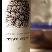 Crowdpleazin 2013