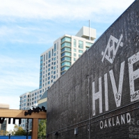 New Localwise Post: Behind the Brick Walls of Oakland's New Mixed-Use Development - The Hive!
