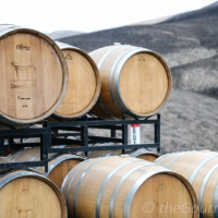 Prosser Wine Part 2: Best Wines in the Area