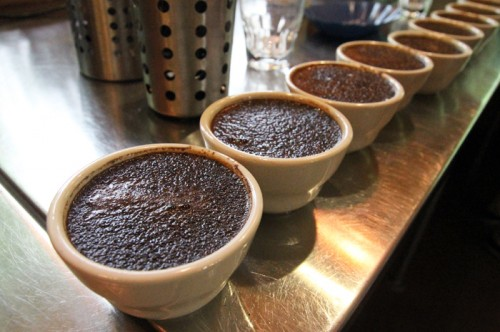 Counter Culture Coffee Cupping