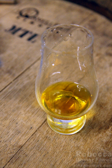 Sampling Coastal Spirits and the Gin Farallon Kickstarter